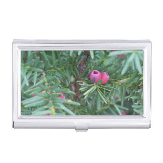 Pink and Green Business Card Holder
