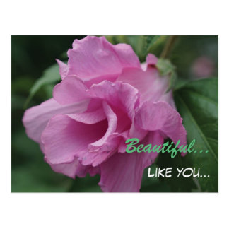 Pink and Green Floral Post Card - Thinking of You