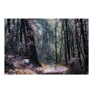 Pink and Green Ice Forest Hot Springs Mt Trail Poster