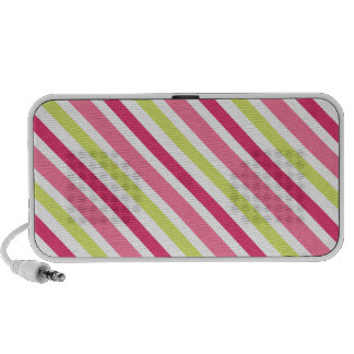 Pink and lime green candy stripes speakers