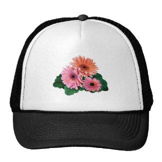 Pink and Orange Gerbera Daisies Hat