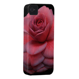 Pink and Purple Camellia iPhone 4 Case-Mate Case