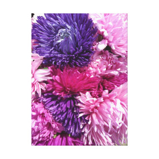 Pink And Purple Chrysanthemums Canvas Print