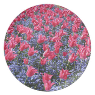 Pink and purple flower field party plates