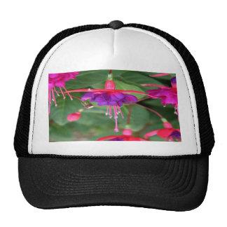 Pink and Purple Fuschia Flowers Cap