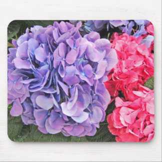 Pink and Purple Hydrangeas Flowers - Mouse Pad