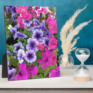 Pink and Purple Petunia Blossom Plaque