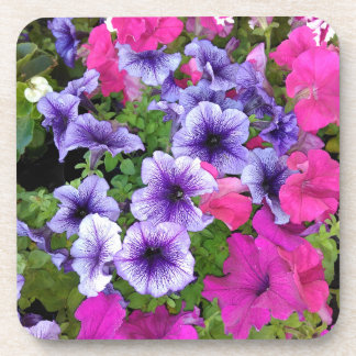 Pink and Purple Petunia Flower Blossom Coaster