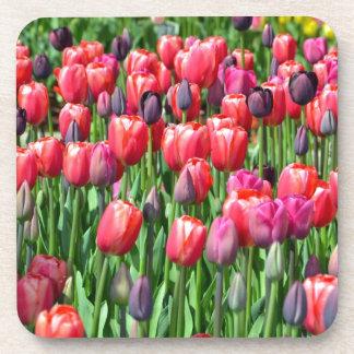 Pink and purple tulip garden print beverage coasters