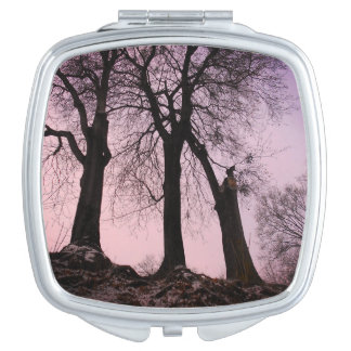 Pink And Purple Twilight In The Woods Compact Mirrors