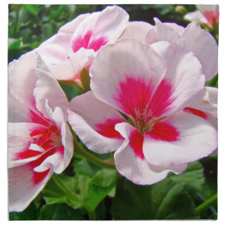 Pink and Red Geranium Floral Cloth Napkins