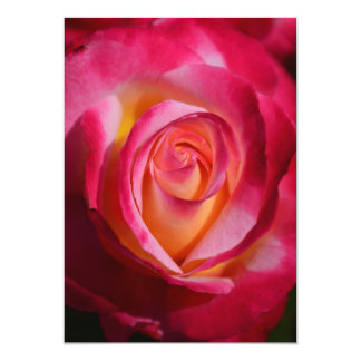 Pink and Red Rose with Yellow Highlights 13 Cm X 18 Cm Invitation Card