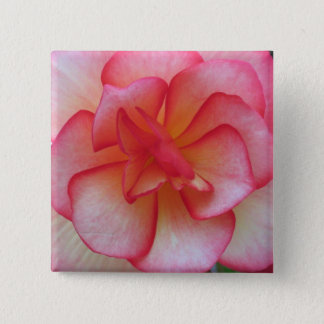 Pink and White Begonia Button