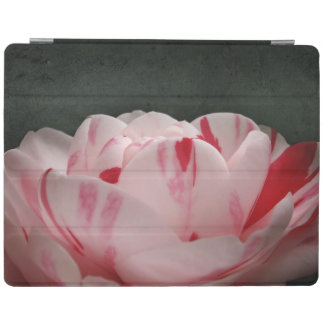 Pink and White Camellia iPad Smart Cover iPad Cover