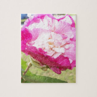 pink and white changeable hibiscus bloom jigsaw puzzle