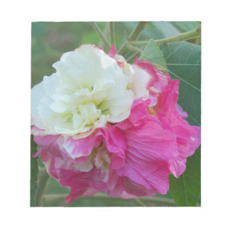 pink and white changeable hibiscus bloom notepad