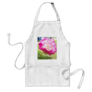 pink and white changeable hibiscus bloom standard apron