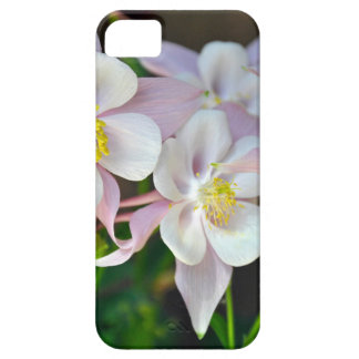 Pink and white columbine flowers iPhone 5 case