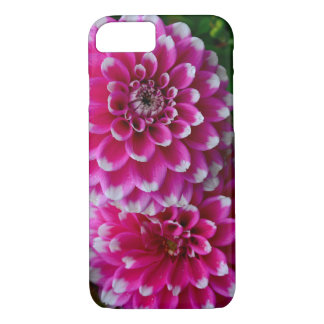 Pink and white dahlia flowers iPhone 8/7 case