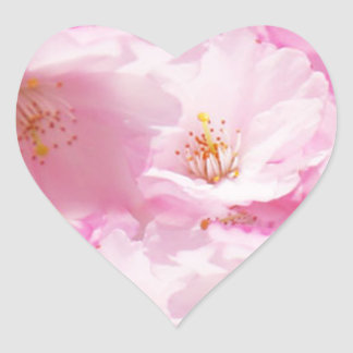Pink and White detail blosso Heart Sticker