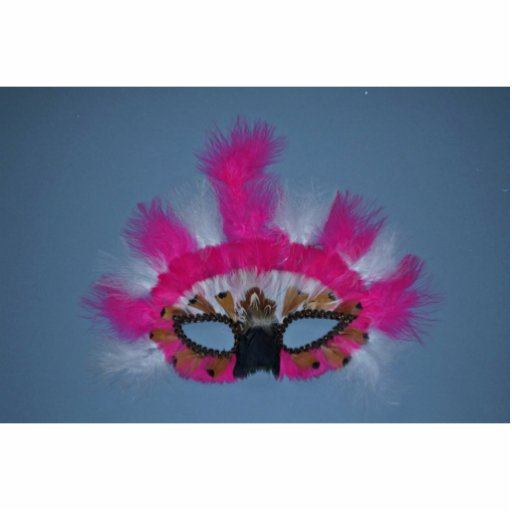 Pink and white feather mask photo cut out