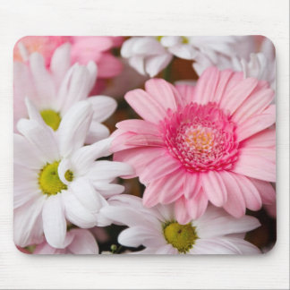 Pink and White Gerbera Daisies Mouse Pads