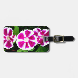 Pink and White Morning Glory Flowers Tags For Bags