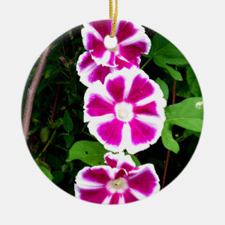 Pink and White Morning Glory Flowers Round Ceramic Decoration