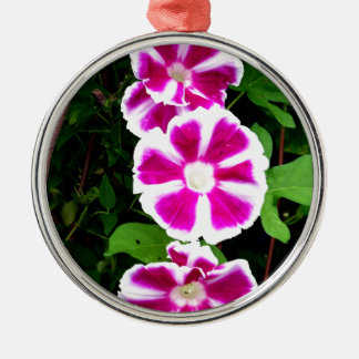 Pink and White Morning Glory Flowers Silver-Colored Round Decoration