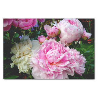 Pink and White Peonies Tissue Paper
