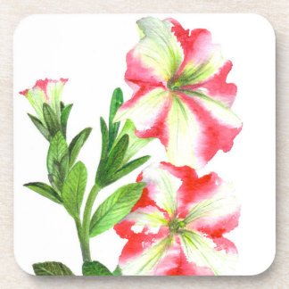 Pink and White Petunias Floral Art Coaster