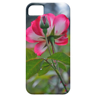 Pink and white rose barely there iPhone 5 case