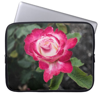 Pink and White Rose Laptop Case
