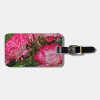 Pink and white roses luggage tag