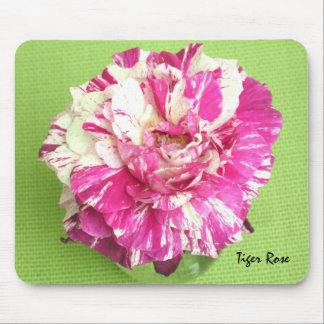 Pink and White Tiger Rose Mousepad