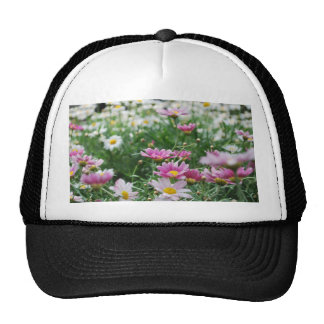 Pink and White Wildflowers Hats