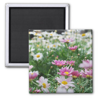 Pink and White Wildflowers Square Magnet