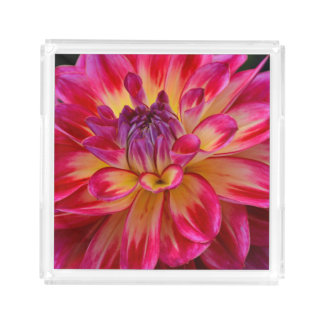 Pink and yellow dahlia acrylic tray