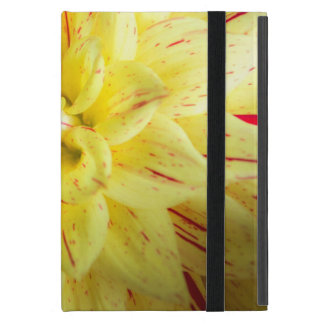 Pink and yellow iPad mini cover