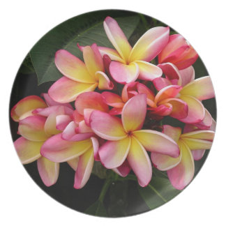 Pink and Yellow Plumeria Flowers Plate