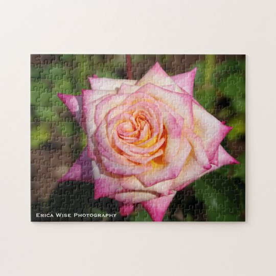 Pink and Yellow Rose Jigsaw Puzzle