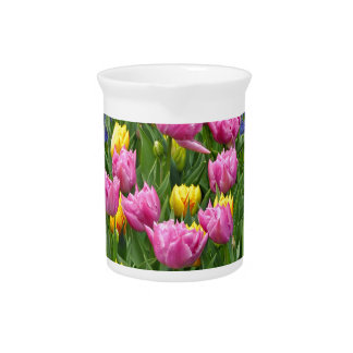 Pink and yellow spring tulips drink pitchers