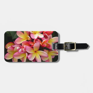 Pink and Yellow Tropical Plumeria Flowers Luggage Tag