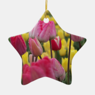 Pink and Yellow Tulips Ceramic Star Decoration