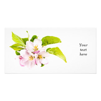 Pink apple blossoms customized photo card