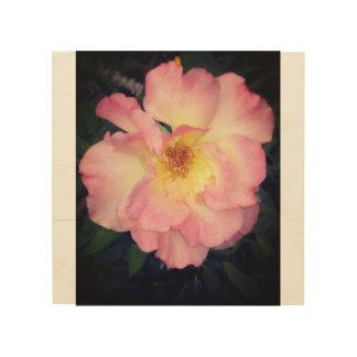 Pink Arizona Flower Wood Wood Print