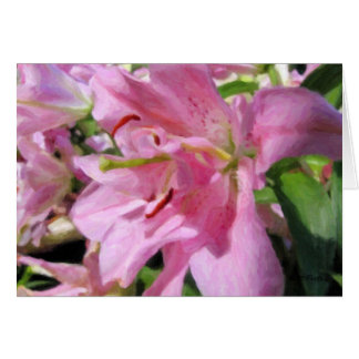 Pink Asiatic Lily Blank Card