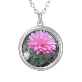 Pink Aster Flowers Round Pendant Necklace