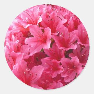 Pink Azalea Classic Round Sticker