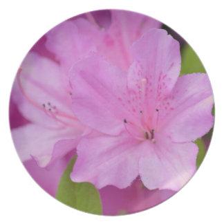 Pink Azalea Flowers Plate